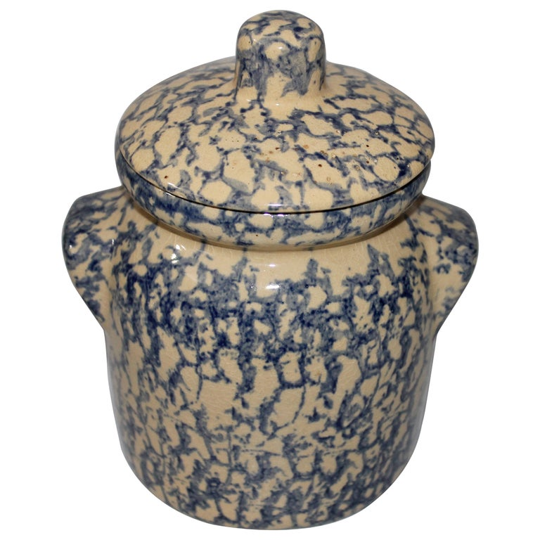 Early 20th Century Spongeware Canister Jar For Sale