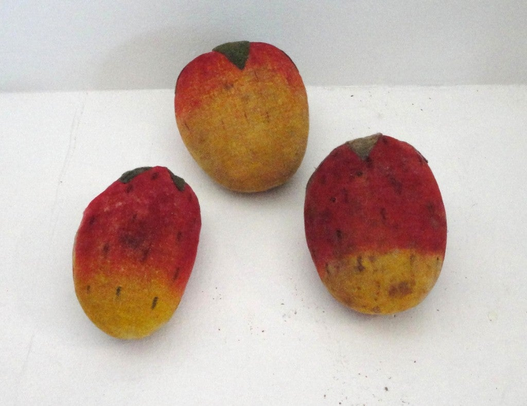 Rare Collection Of Velvet Fruit On 19thc Red Painted Wood Stand 6