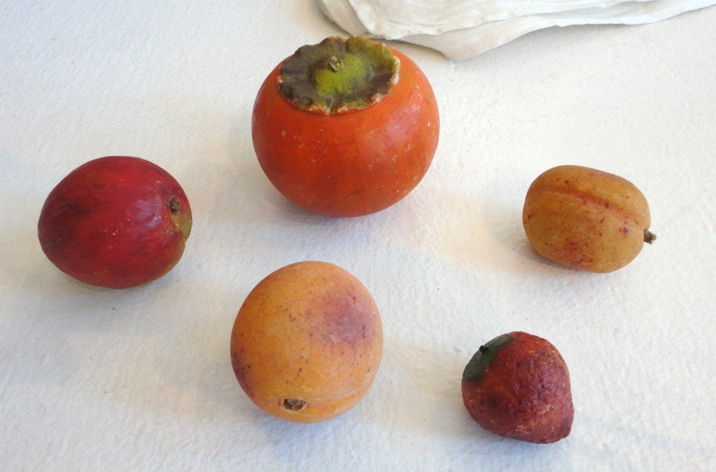Fantastic Large Collection Of Stone Fruit W Many Rare