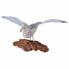 Fantastic Early 20Th Century N.E. Hand Carved Wood Seagull on Drift Wood