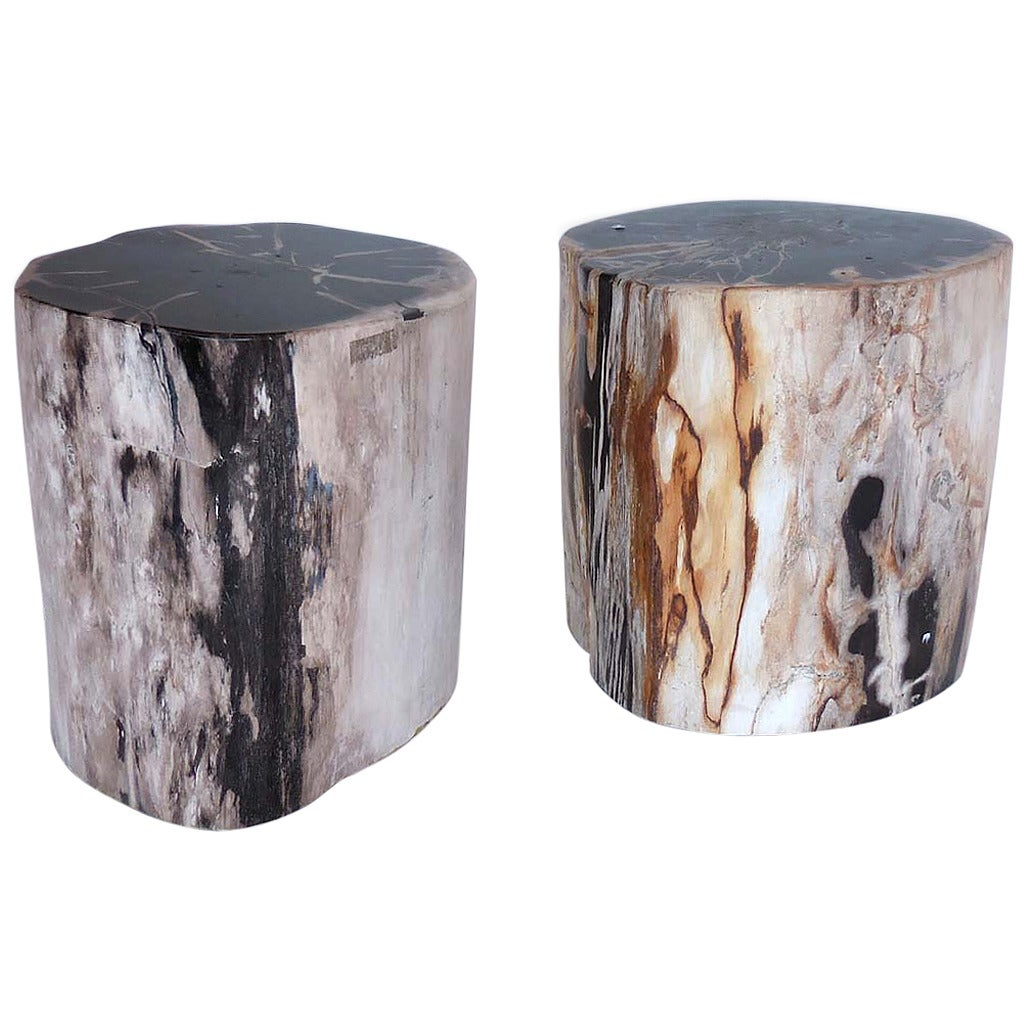 petrified wood stool side tables at 1stdibs