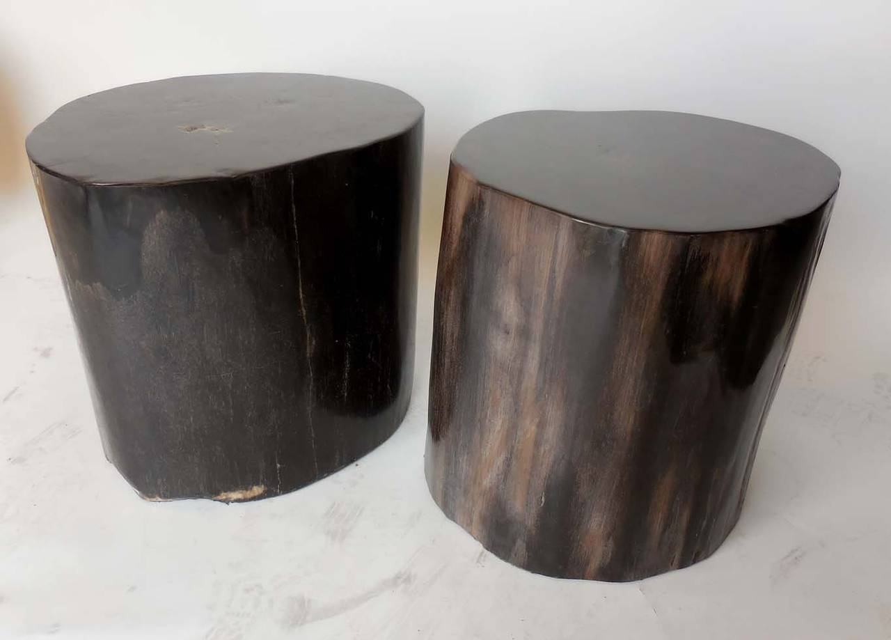 black petrified wood tables at 1stdibs