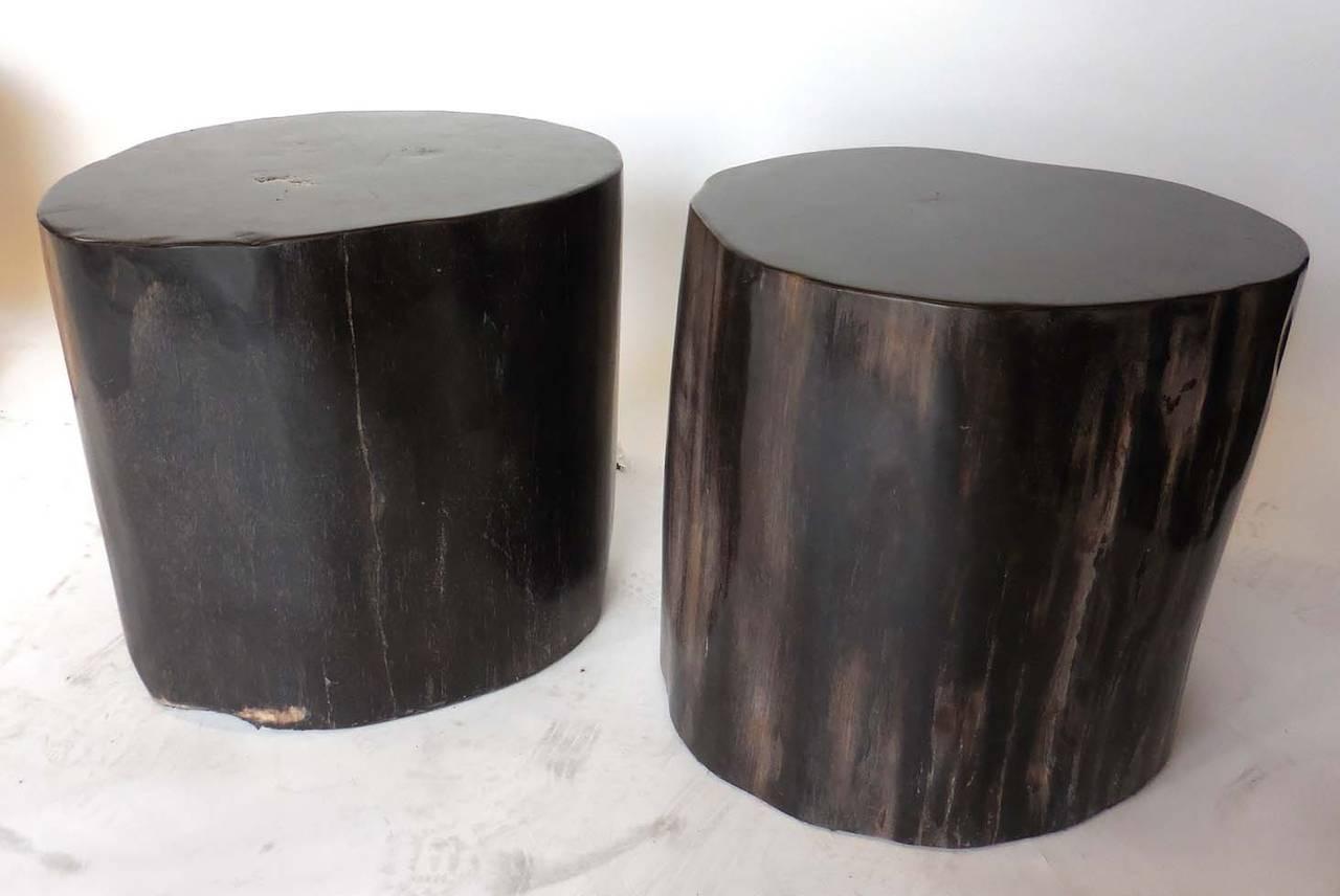 Black Petrified Wood Tables At 1stdibs