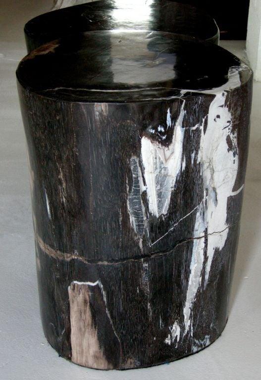 Petrified Wood Table At 1stdibs