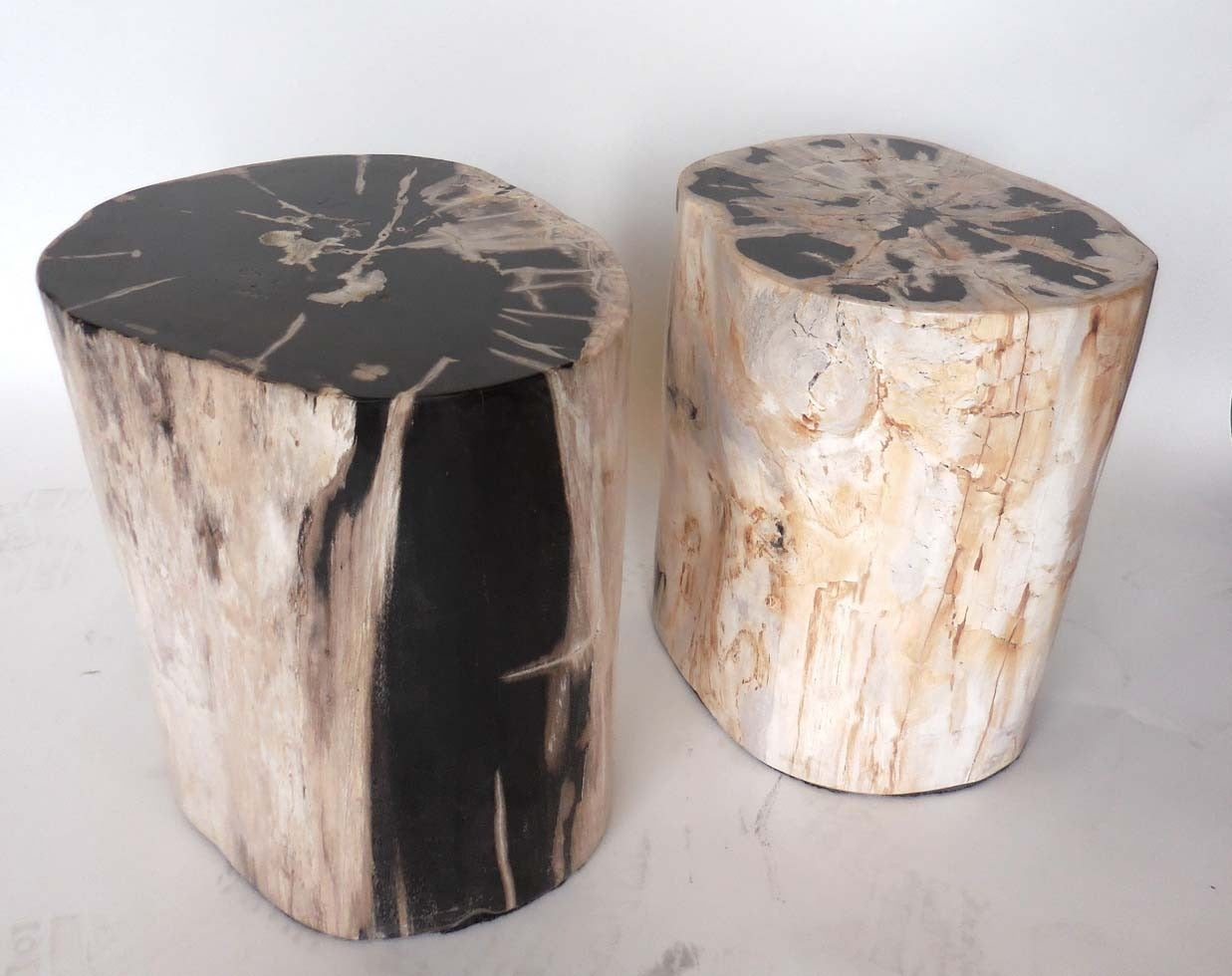 petrified wood side tables at 1stdibs