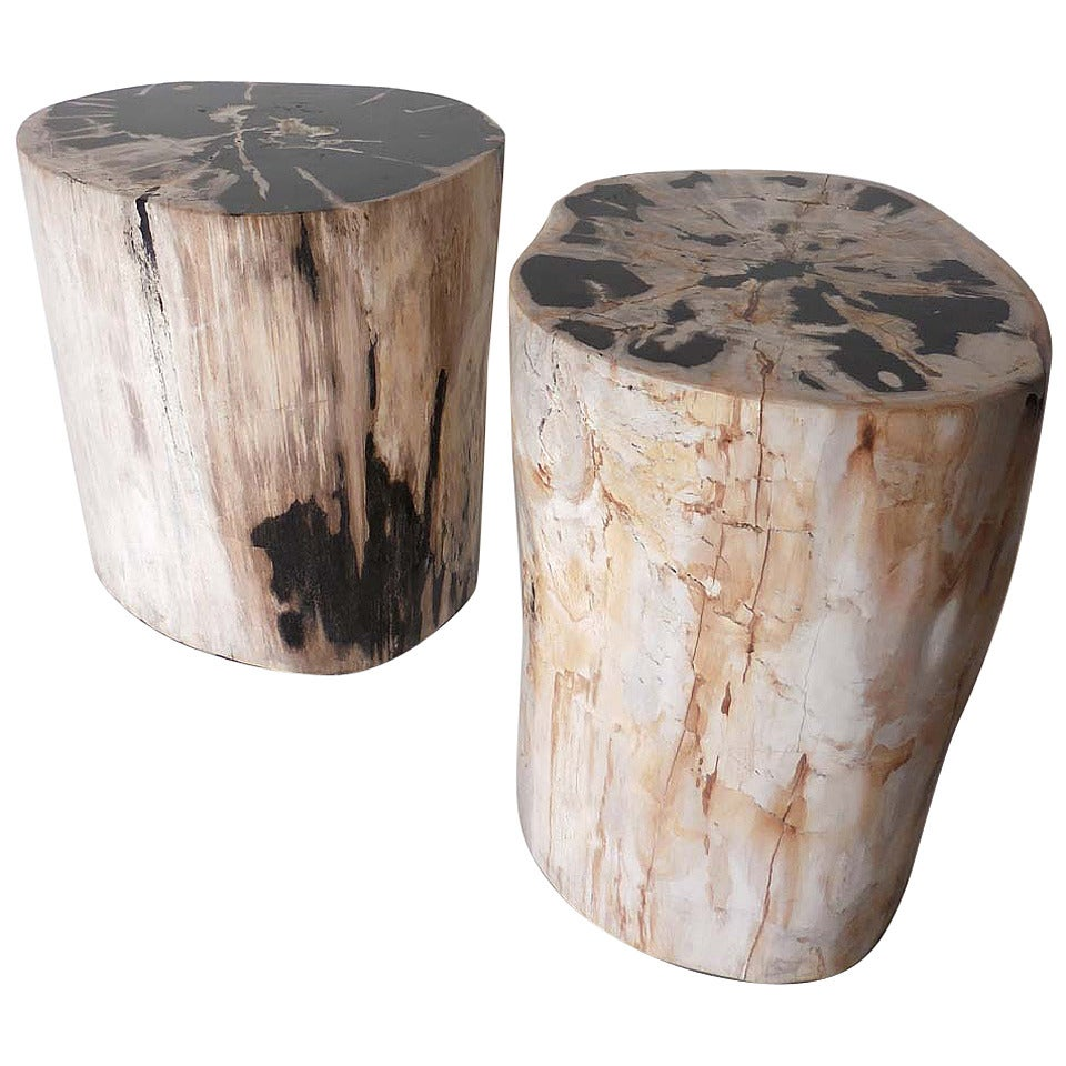 Petrified wood side tables at stdibs