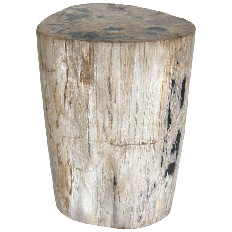 Petrified wood side table at 1stdibs for Petrified wood furniture for sale