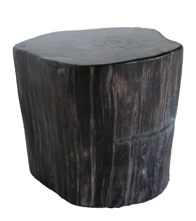 International Style Petrified Wood Stool Or Side Table For Sale