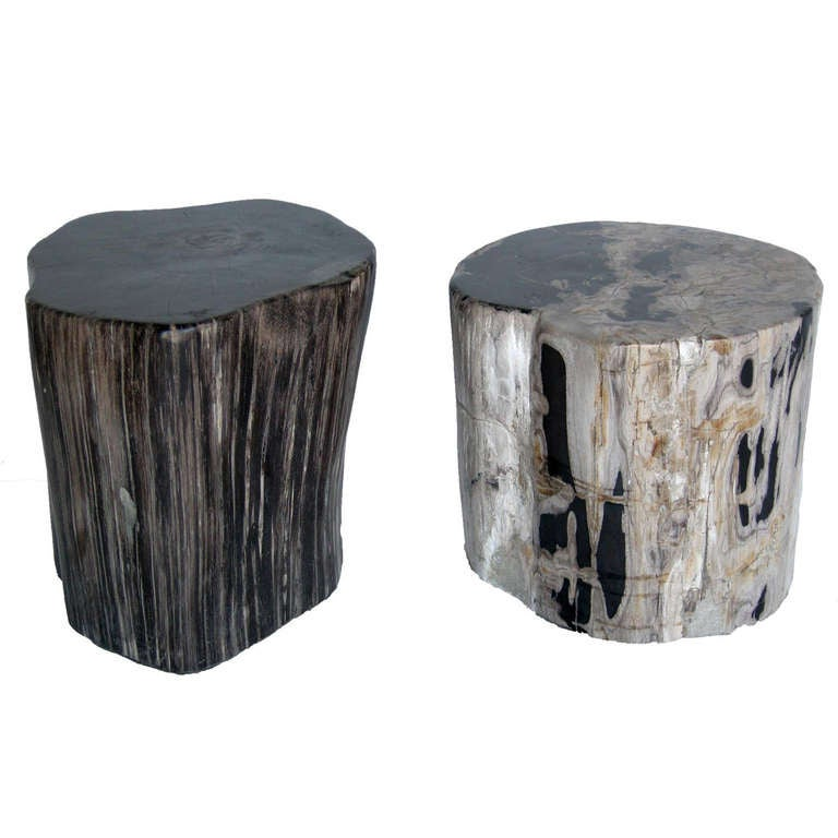 Petrified Wood Side Table ~ Petrified wood stool or side table at stdibs