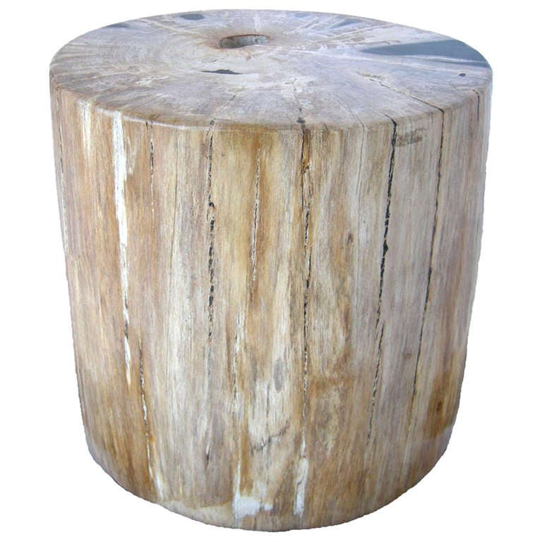 petrified wood stool table at 1stdibs