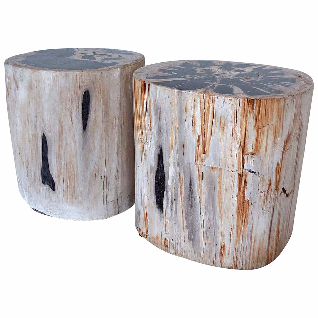 Petrified Wood Side Table ~ Petrified wood side table or stool one available at stdibs