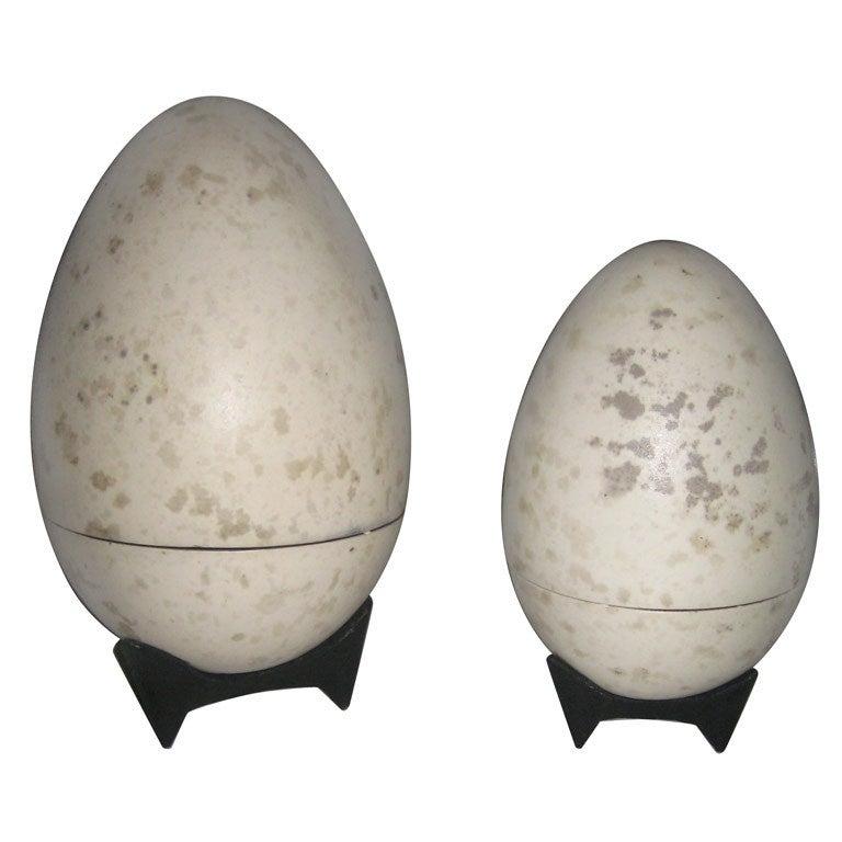 Giant Hans Hedberg Ceramic Egg Boxes For Sale