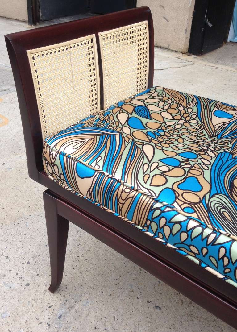 Mahogany and Cane Bench with Pucci-Style Silk Cushion 4