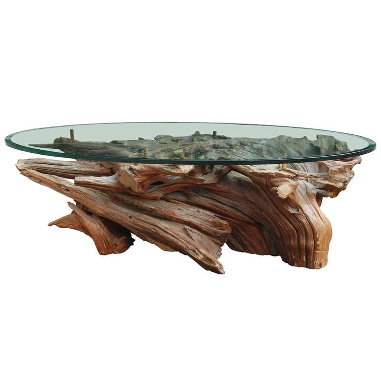 Large Driftwood Coffee Table At 1stdibs