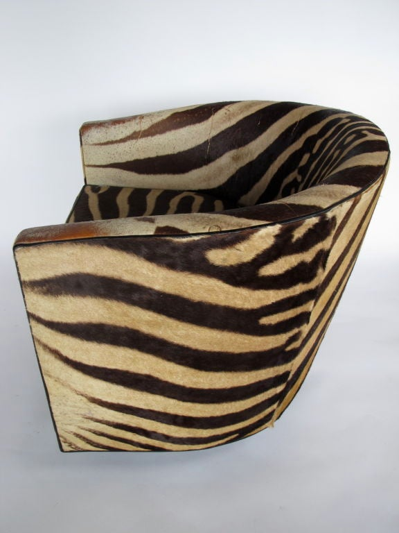 A Pair of Wormley for Dunbar Barrel Chairs in Original Zebra image 6
