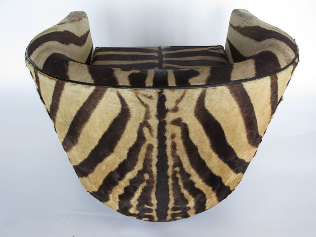 A Pair of Wormley for Dunbar Barrel Chairs in Original Zebra image 8