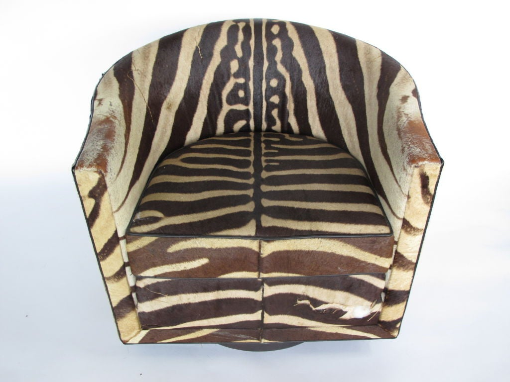 A Pair of Wormley for Dunbar Barrel Chairs in Original Zebra image 9