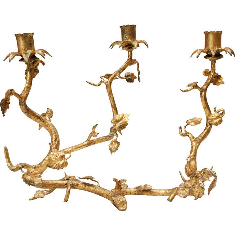 Italian Gilt Iron Tree Branch Candelabrum At 1stdibs