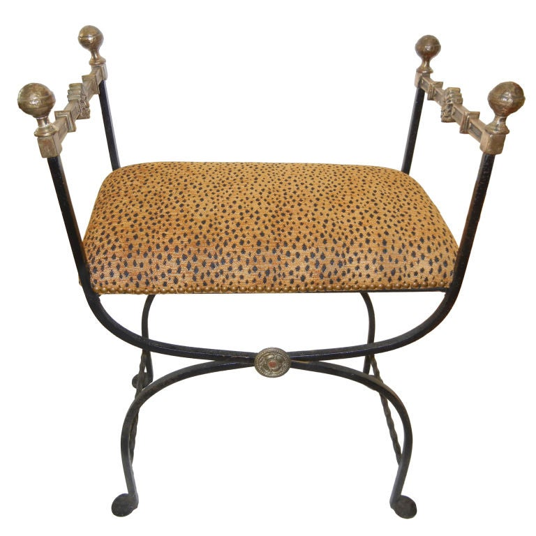A regency savanarola style iron and bronze leopard print Leopard print bench