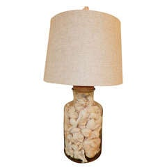 A Large Glass & Natural Sea Shell Lamp