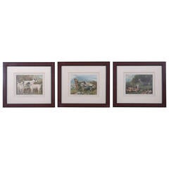20th Century Trio Prints of Terriers