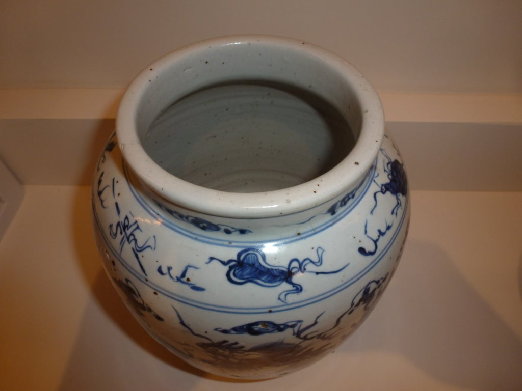Chinese Blue and White Jar Vase For Sale