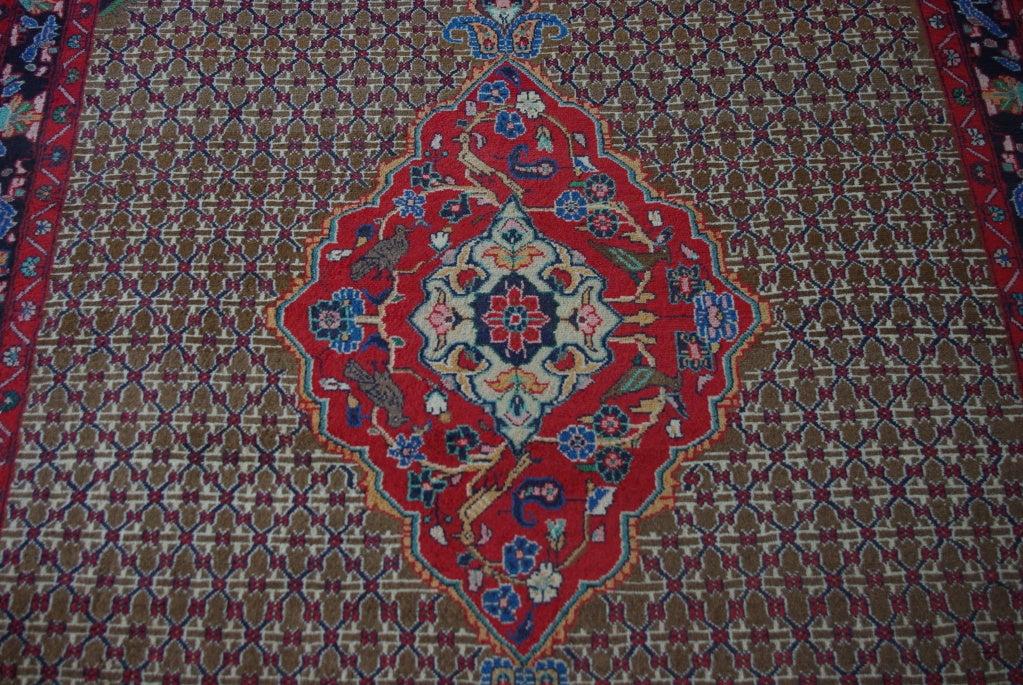 Sarab Carpet/Rug image 5