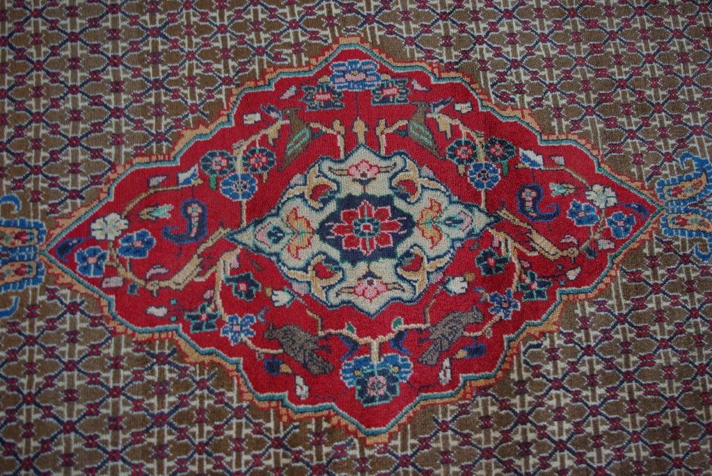 Sarab Carpet/Rug image 9