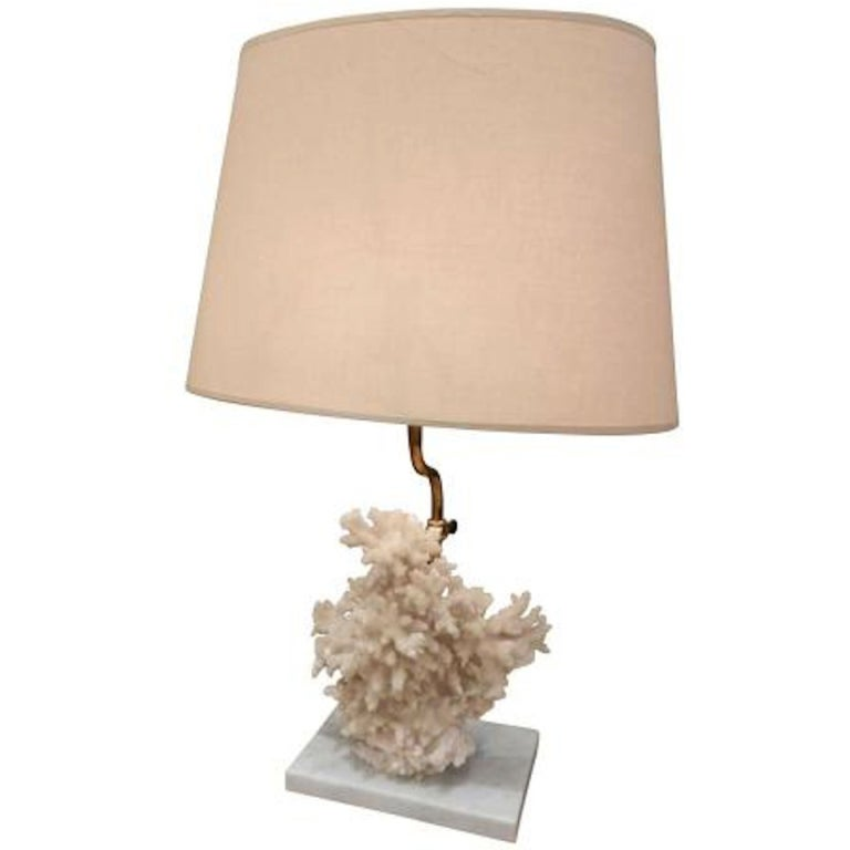 single table lamp featuring a specimen of coral at 1stdibs. Black Bedroom Furniture Sets. Home Design Ideas