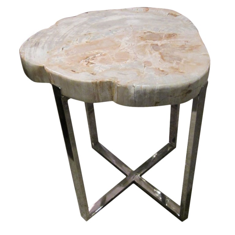 Petrified wood side table at stdibs