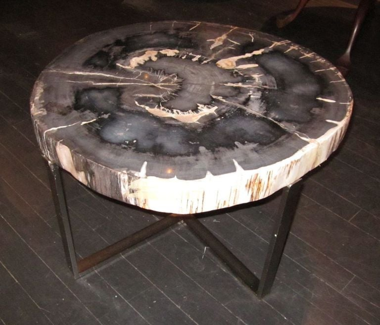 Petrified Wood Coffee Table At 1stdibs