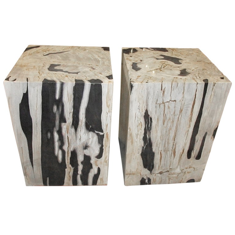Superior Petrified Wood Side Tables 1