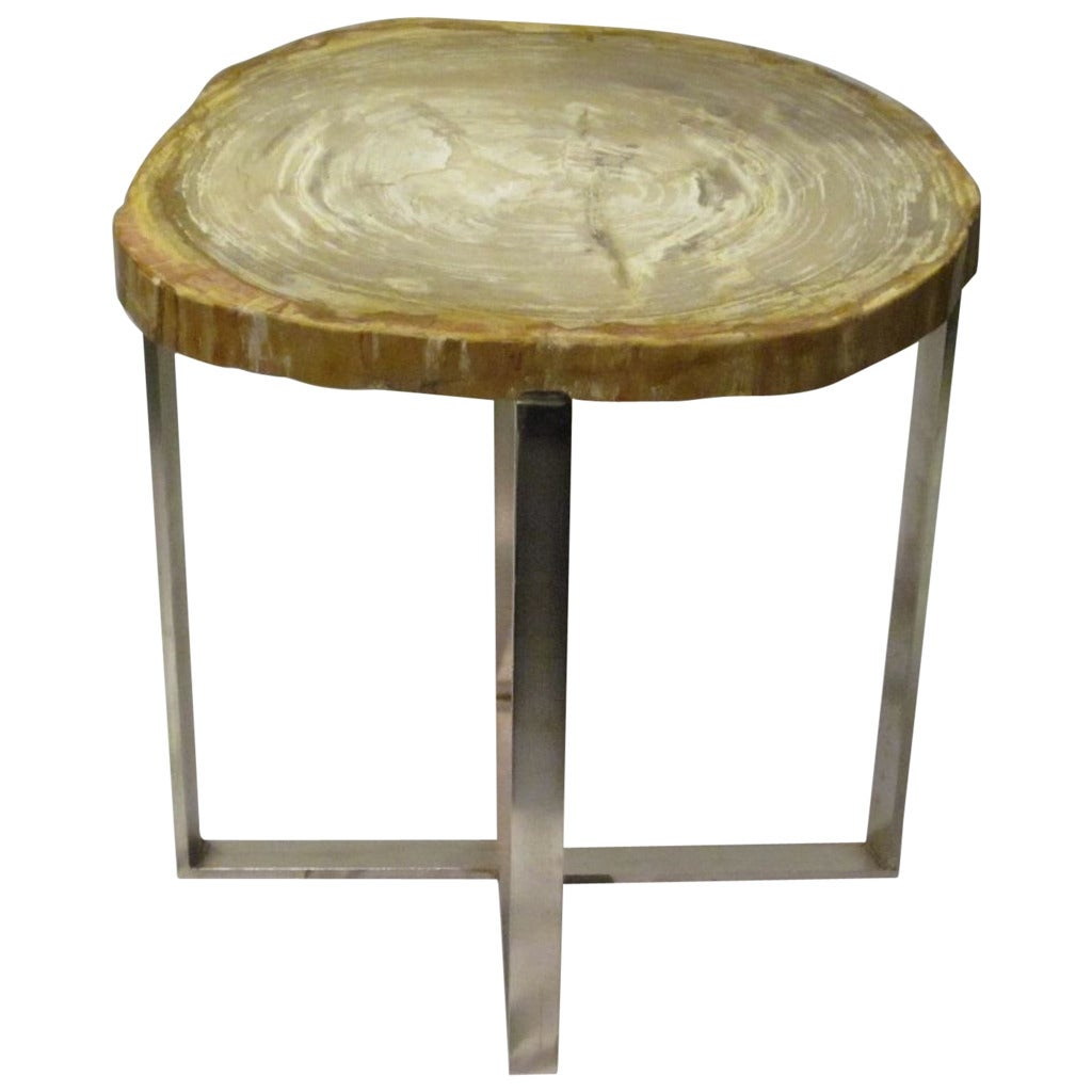 Petrified wood side table at stdibs