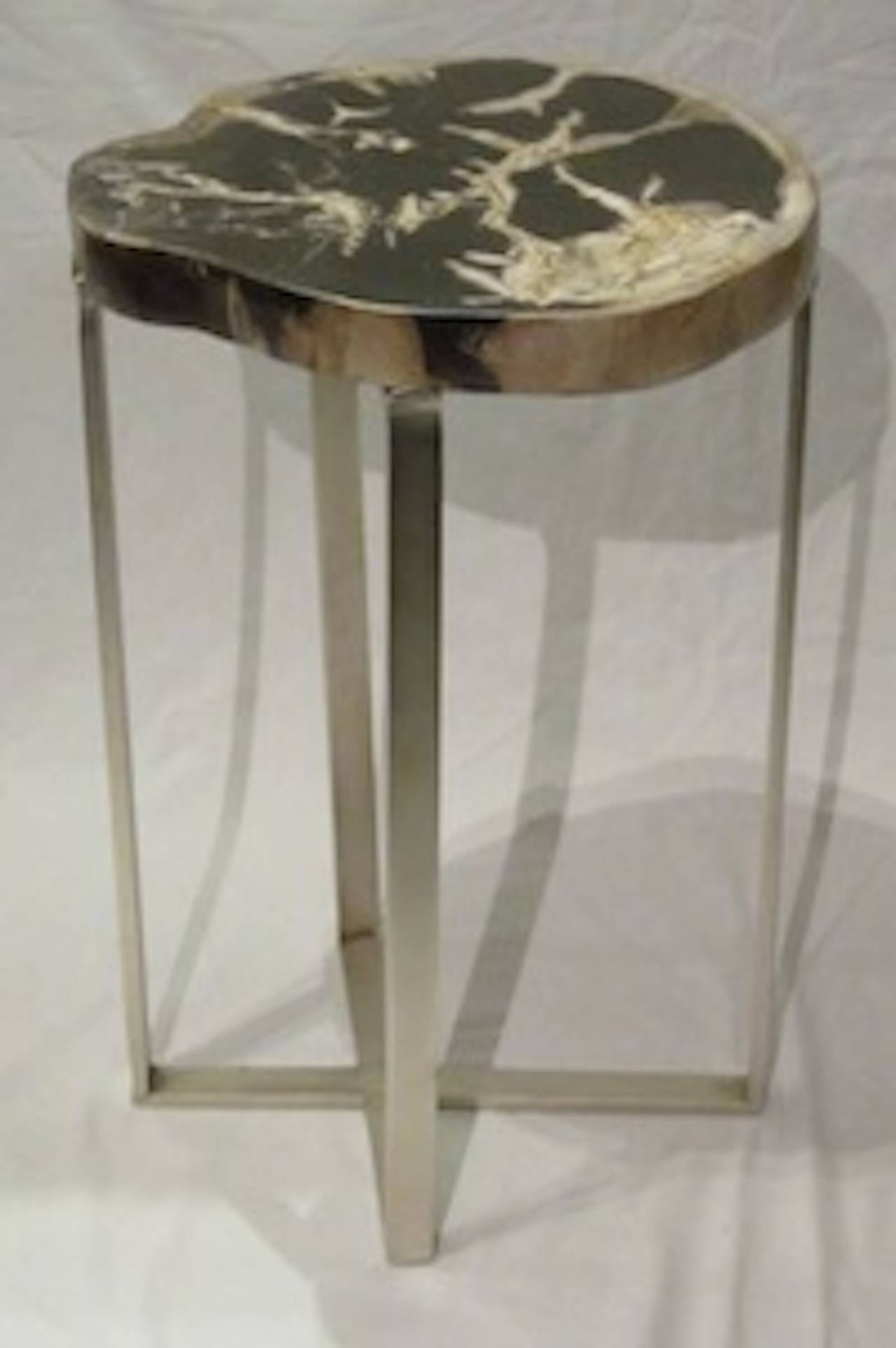 Indonesian Petrified Wood Slice Side Table at 1stdibs
