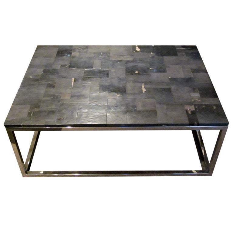 French Petrified Wood Coffee Table