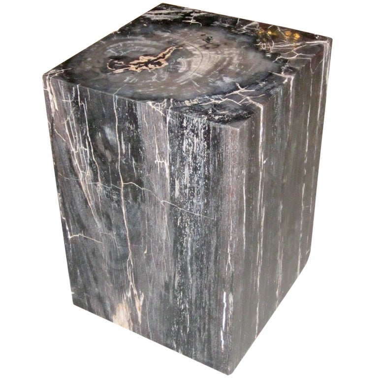 Petrified Wood Cube Side Or Coffee Table At 1stdibs