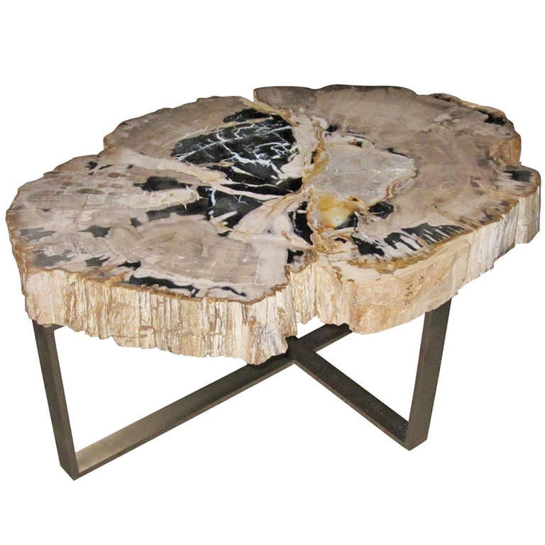 Petrified wood coffee table at 1stdibs for Petrified wood furniture for sale