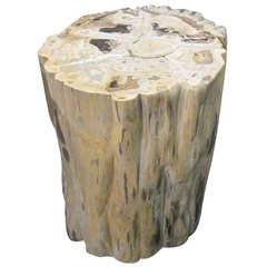 Indonesian Petrified Wood Round Cocktail Table