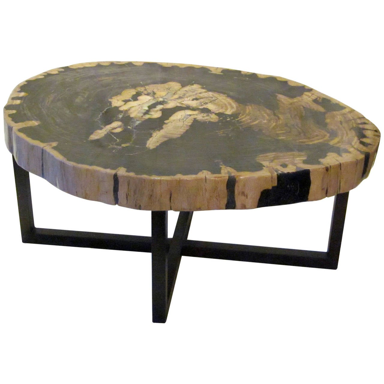 Contemporary Indonesian Petrified Wood Coffee Table At 1stdibs