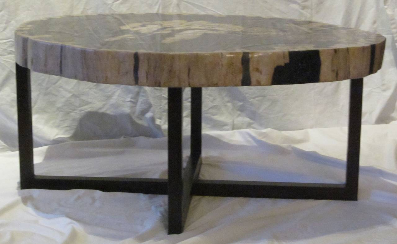 Contemporary Indonesian Petrified Wood Coffee Table Image 5