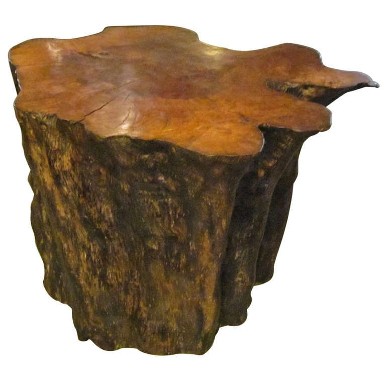 Indonesian Petrified Wood Side Table At 1stdibs