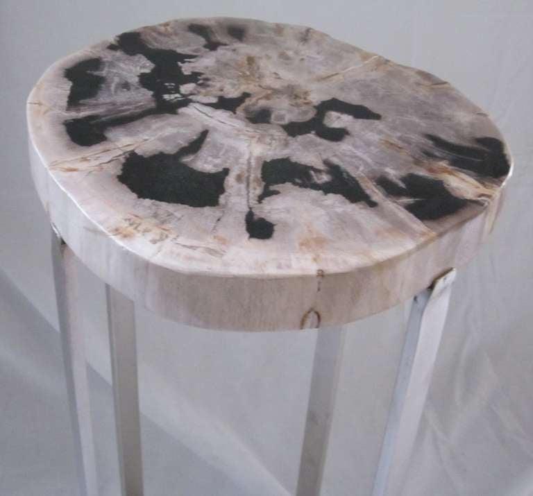 Petrified Wood Slice Side Table at 1stdibs