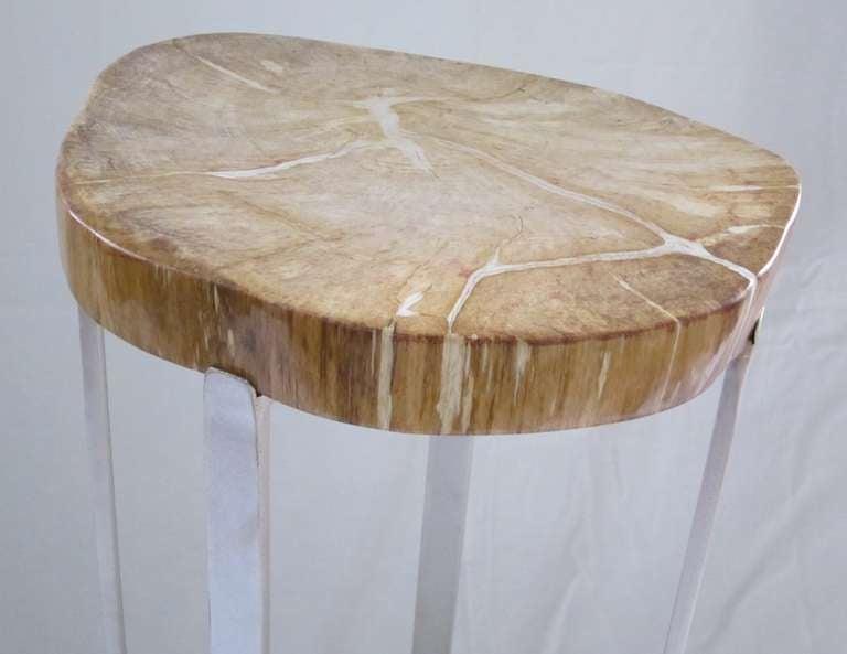 Petrified Rust Wood Slice Top Side Table at 1stdibs