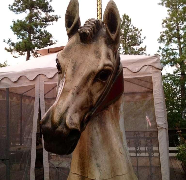 Turn of the Century Dentzel Standing Carousel Horse 6