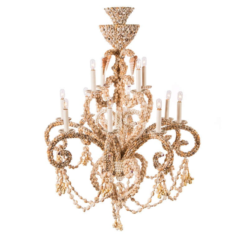 Sea Shell Chandelier At 1stdibs