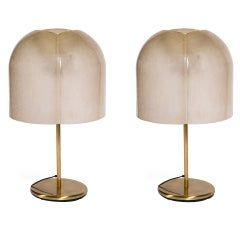 Resin Shade Brass Lamps