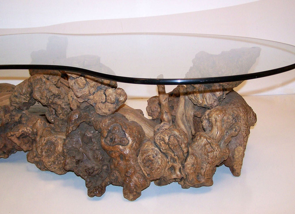 Burl Wood Root Coffee Table At 1stdibs