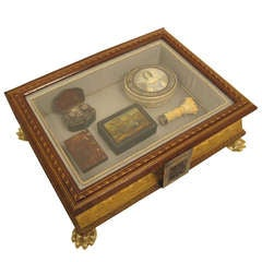 Handsome Book Vitrine or Jewel Box