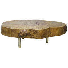 Italian Coffee Table by Gimo Fero