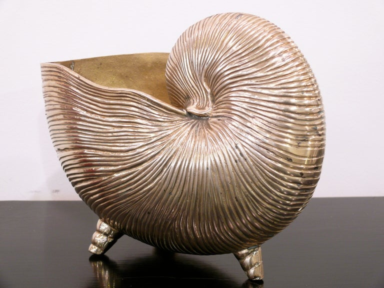 Very decorative shell vase/bowl/catch all in textured brass.